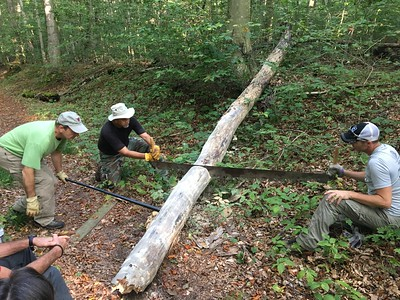 Wilderness Volunteers: 2017 Sleeping Bear Dunes National Lakeshore (Michigan) Service Trip