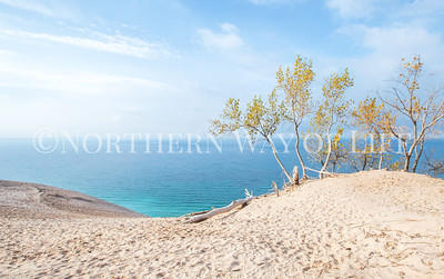 View from Outlook #9, Pierce Stocking Scenic Drive, Sleeping Bear Dunes National Lakeshore: Empire, Michigan