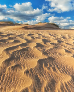 Sleeping Bear Sidewinder Dunes