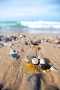 Petoskey stone on Van's Beach: Leland, Michigan