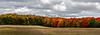 Esch, Tree Line