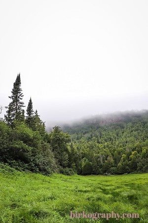 The lush green clearing in the middle of the park with thick fog rolling in.  Sleeping Giant Provincial Park, ON, Canada