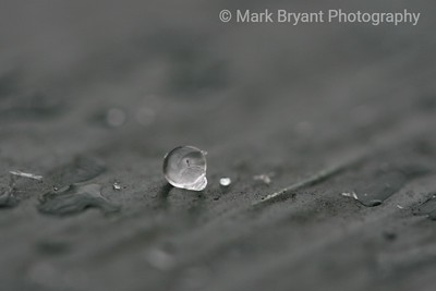 A single drop of sleet with its tiny speck of imperfection inside