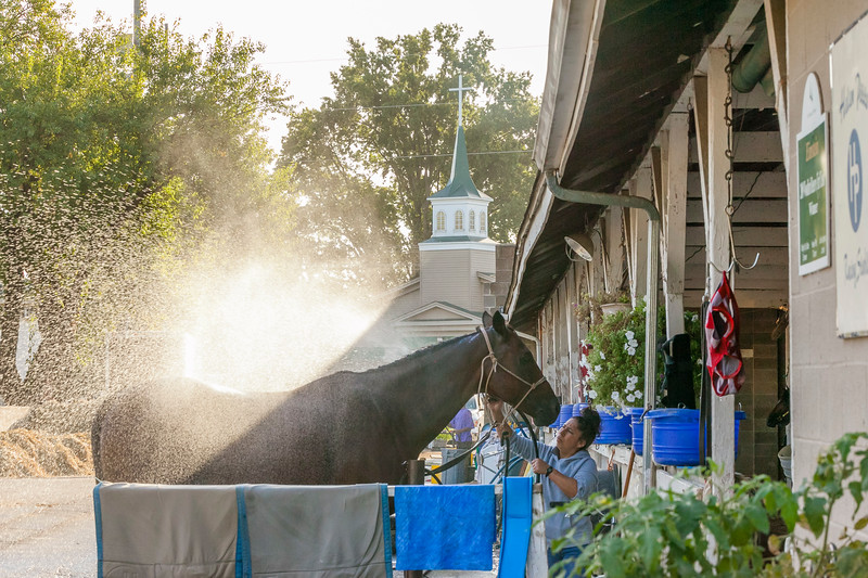 Steeple Light  Churchill Downs  09/27/2019