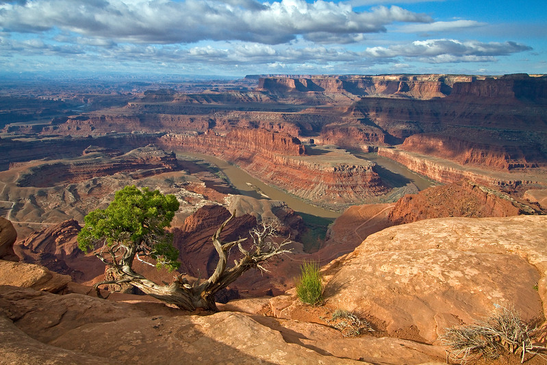 Morning, Dead Horse Point State Park, Colorado River, Canyonlands National Park in Distance, Utah, USA, North America