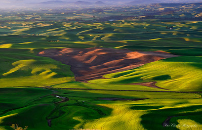 The famous Palouse rolling hills