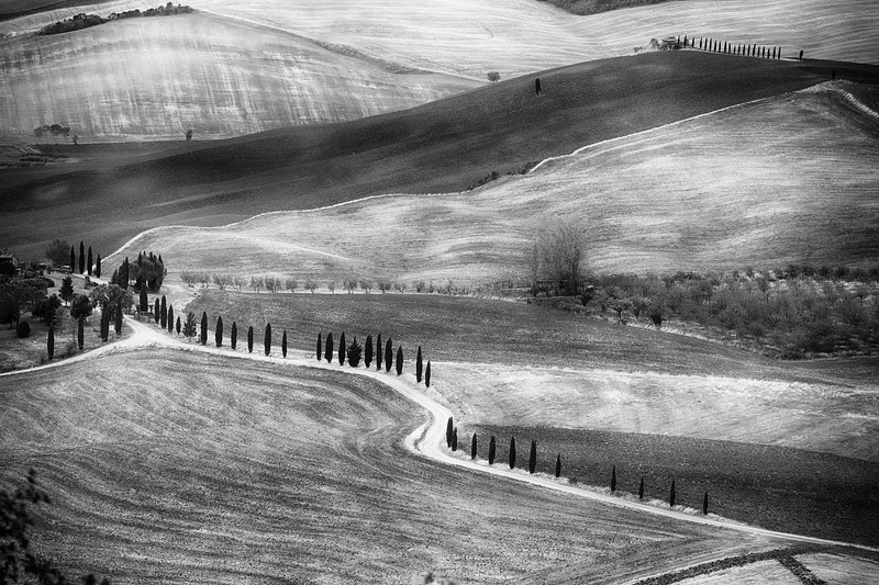 Country Road in Val D'Orcia, Tuscany, Italy