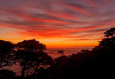 Day's End, Point Lobos