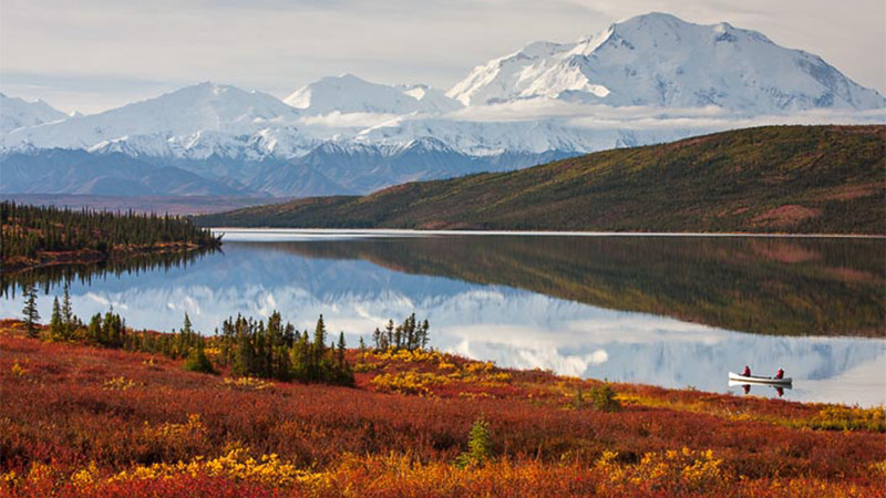 Denali National Park Video