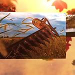 Autumn_1080p