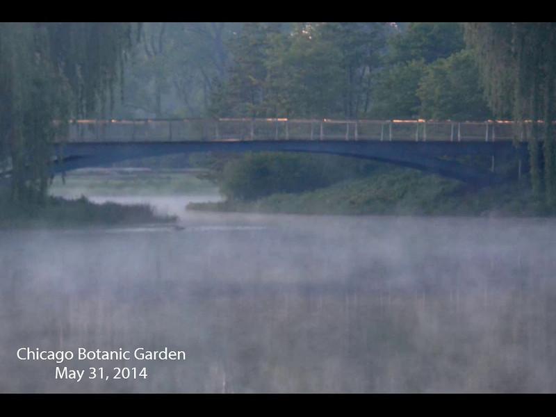 Chicago Botanic Garden   May 31, 2014