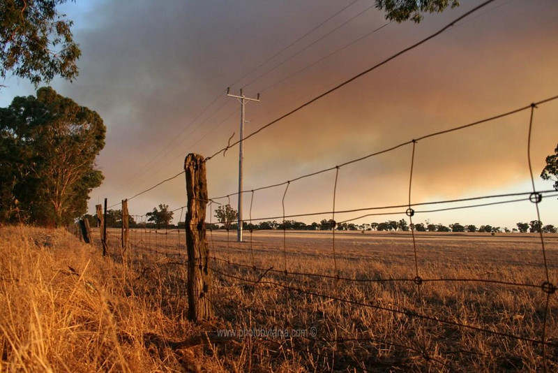 Fire front approaches. Dadswells Bridge, Victoria, Australia.