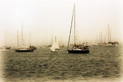 The Harbor....