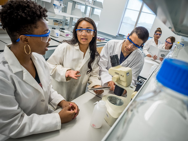 071315_6828_CELS students in lab