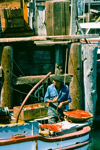 San Francisco Fisherman