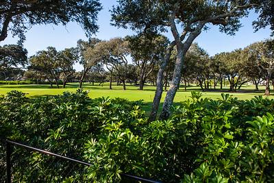 221 Sea Oak Drive - Johns Island -146