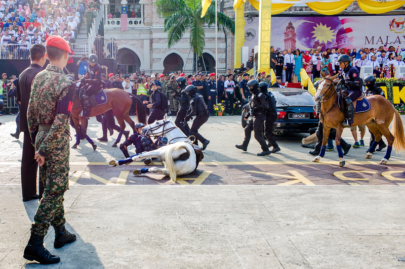 Member of the Malaysian police to fall off from a horse during the 59th National Day celebrations at Independence Square in Kuala Lumpur, Aug. 31, 2016. Malaysia marks its 59th National Day to commemorate the independence of the Federation of Malaya from British rule in 1957.