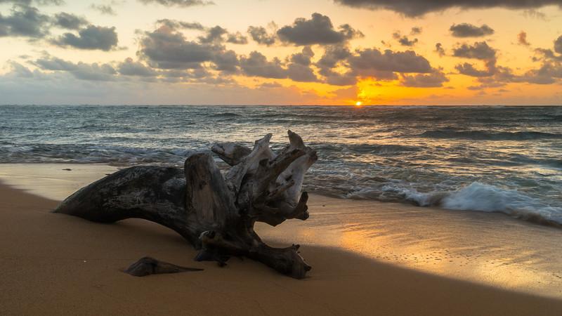 Fathers Day Sunrise, Kapa'a, Kaua'i, Hawai'i, 2014.