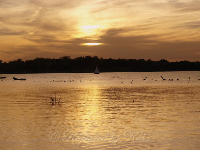 A Sailboat Joins the Molten Gold of a White Rock Lake Sunset
