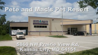 Pete and Mac's Pet Resort in Northland KC