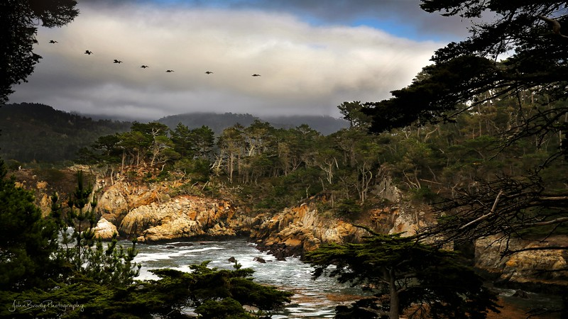 Pelicans Over Cove at Point Lobos California -   There were endless formations of pelicans at Point Lobos near Carmel California. One after the other they zipped by, all seeming to have important places to go. I don't know if the storm was churning up food for them or what. A beautiful display.    John Brody Photography - JohnBrody.com