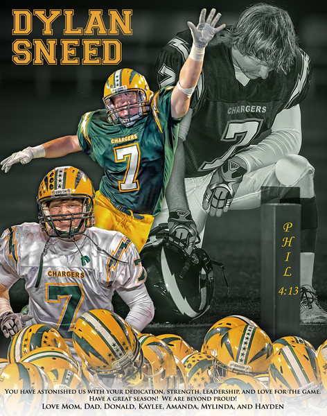 Sneed page