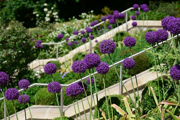 The Gardens, Hope House, Bath