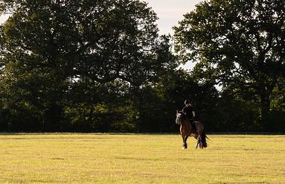 Country Estate, Wiltshire
