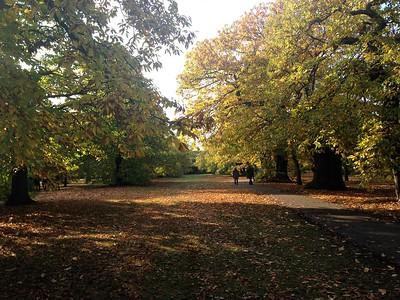 Greenwich Park Restoration, London