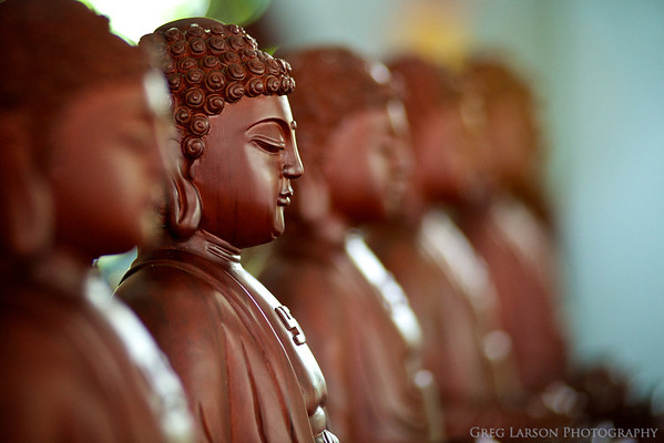 Buddha statues at Bhuddist temple, near Can Tho, Vietnam.