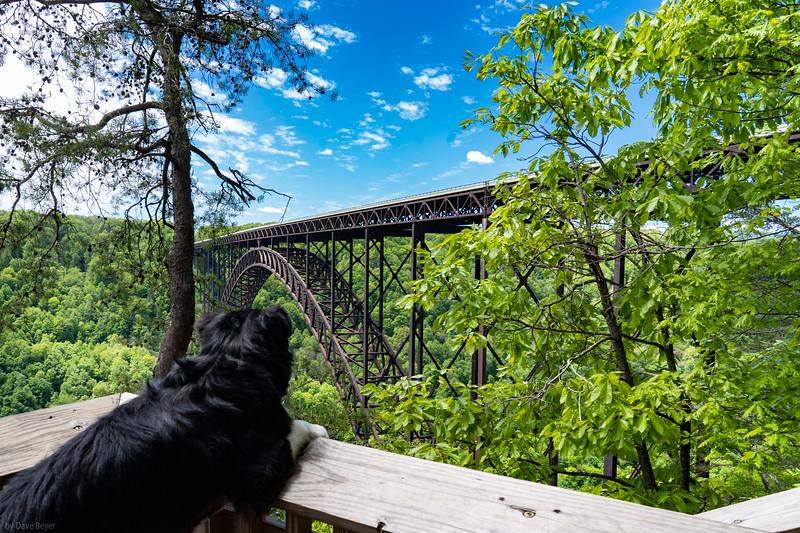 New River Gorge Bridge, Fayetteville, WV
