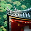 Rooflines, Kiyomizu-dera, Kyoto