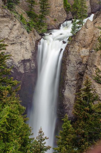 20110712 Yellowstone NP 104