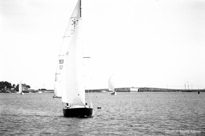 Panacea Racing to the Line