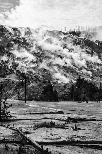 20110712 Yellowstone NP 051
