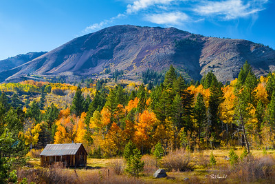 Fall Cabin, Hope Valley