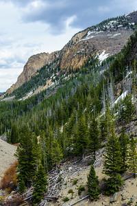 20130511-12 Yellowstone 102