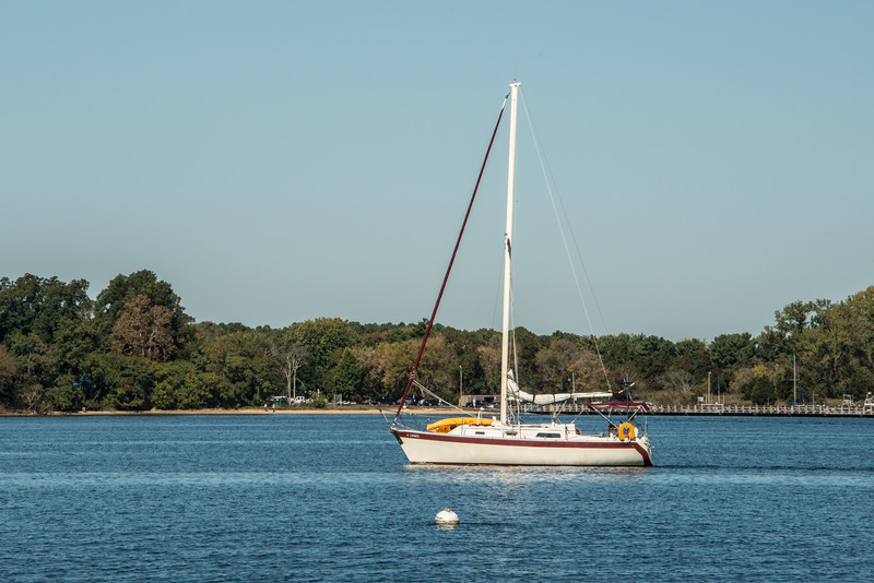 Afternoon Sailing on the Bay
