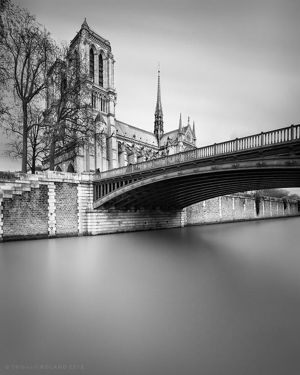 Notre Dame & Pont au Double.