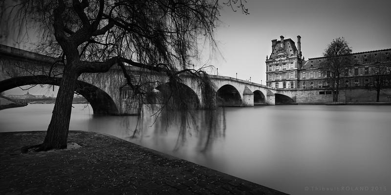 Willow, Royal Bridge & Louvre.