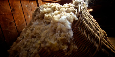 Relics of the past - a large wicker basket full of wool in an old sheep shearing shed in outback New South Wales Australia ~WIDE VIEW~