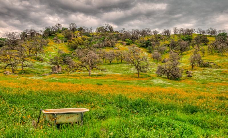 Highway 245, California