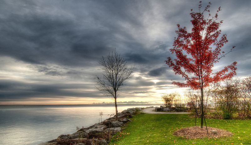 Fall colours around Port Credit