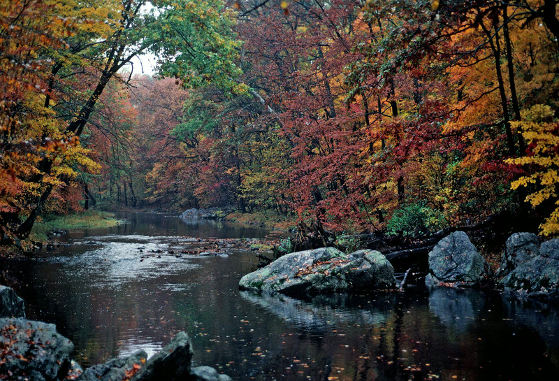 French Creek in Autumn