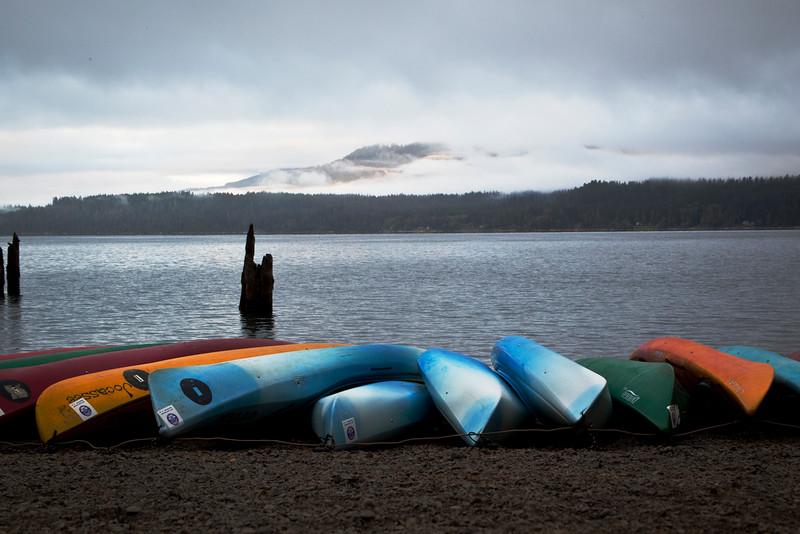 IMG_3496 lake quinault