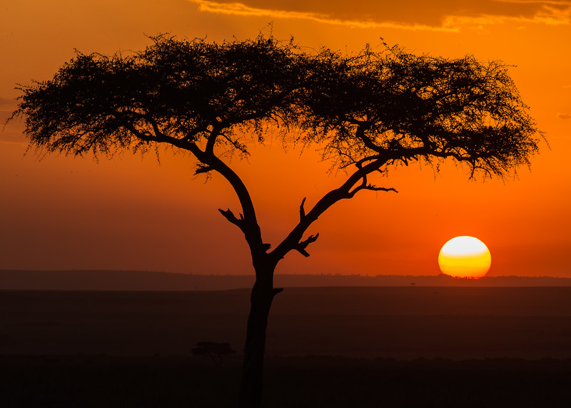 Sunset in the Mara