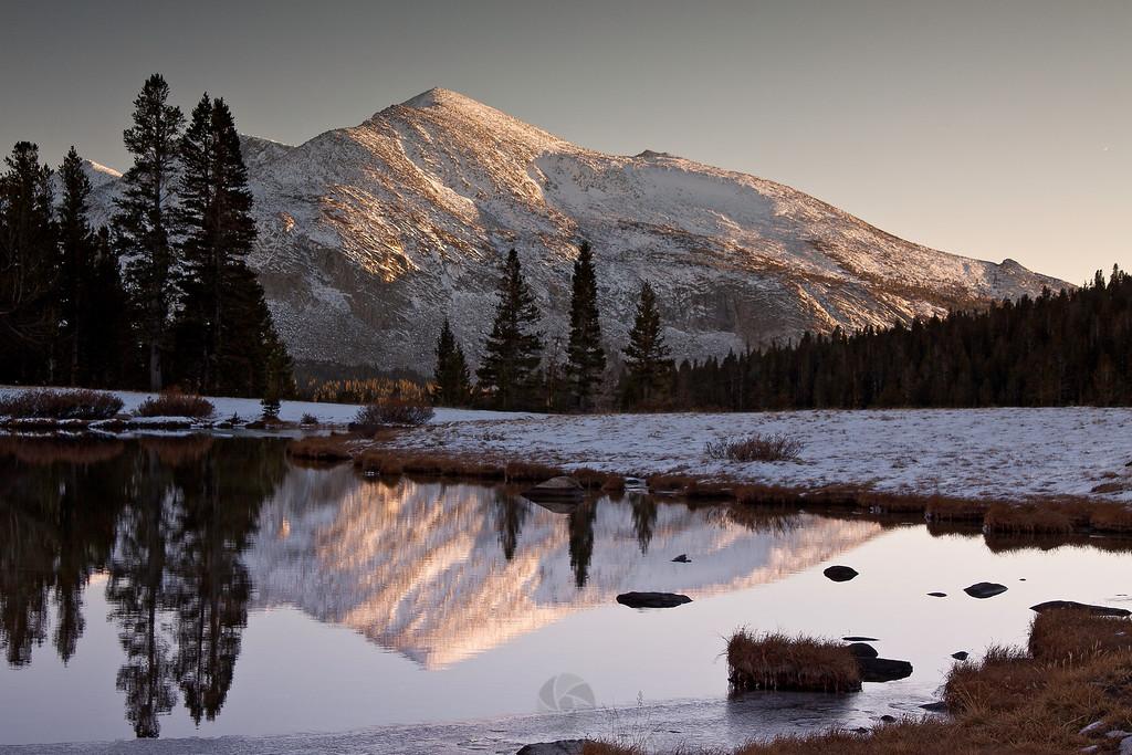 Mt. Dana - IMG#7543