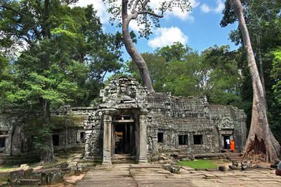 Ta Prohm ruins of Angkor Wat
