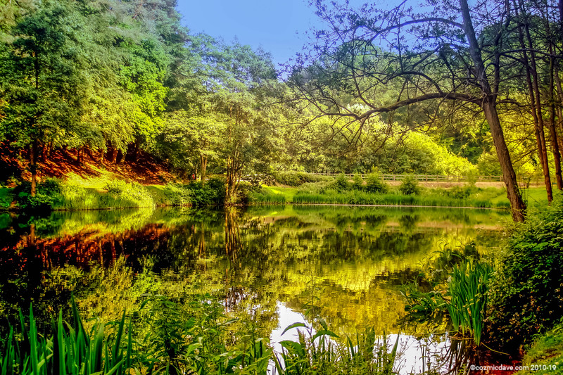 Reflection at Soudley Ponds