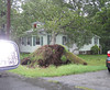 Trees down on two homes on Juliette Street in Andover.